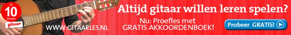 Gitaarles.nl
